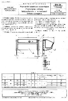 Przenośniki kubełkowe odwadniające - Podwójne człony łańcuchowe z kubełkami - Główne wymagania BN-84/1751-02